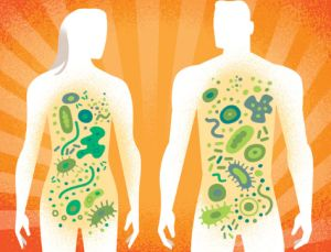 The Gut Microbiome & Why You Need to Nurture It!